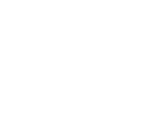North Georgia Brick